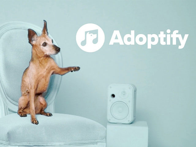 Spotify helps you find your animal companion with Adoptify