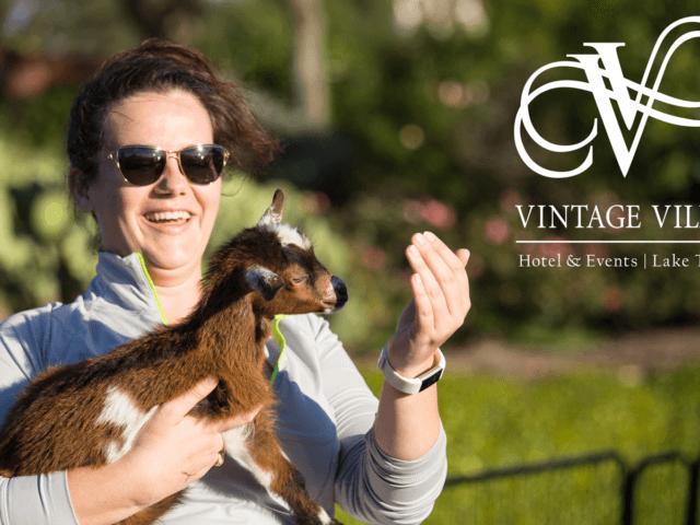 Vintage Villas Goat Yoga | Tricycle Creative